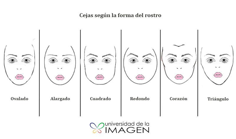 que cejas sientan mejor a cada rostro